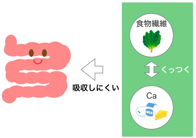 食物繊維とカルシウム